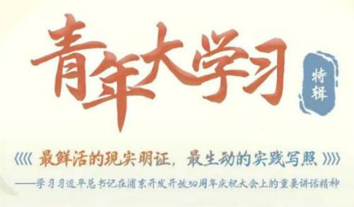 青年大学习第十季浦东开发开放30周年庆祝大会特辑答案
